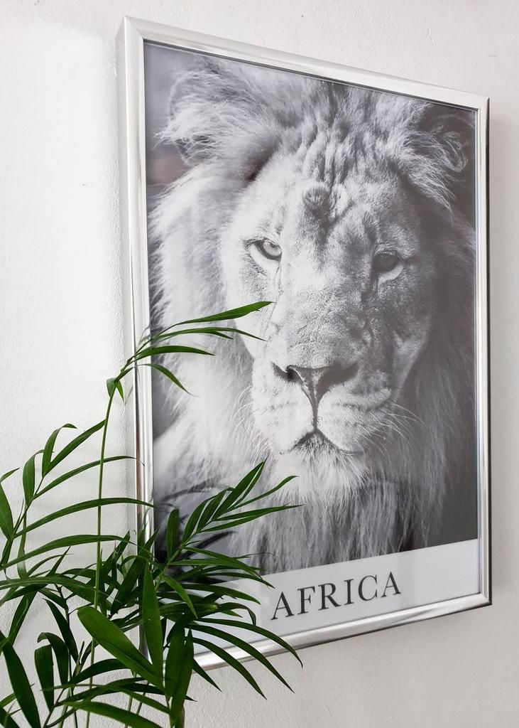Africa wall