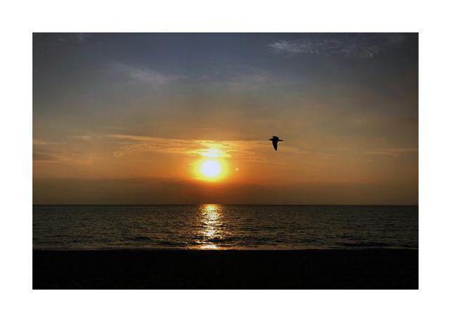Sun make me fly