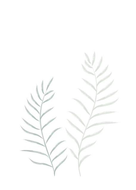 Pale Plants