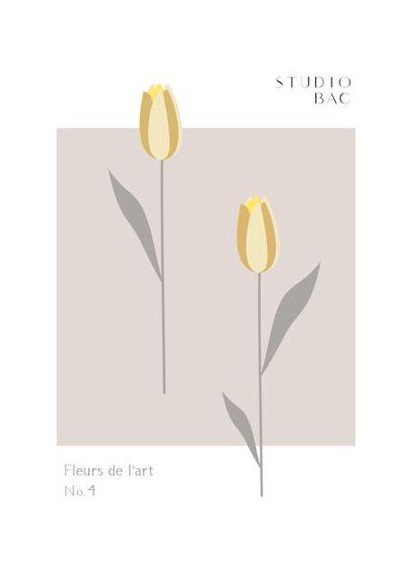 Tulips Studio Bac
