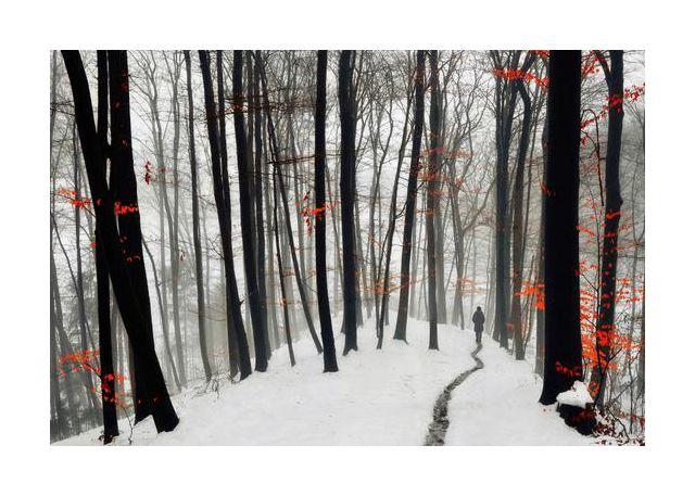 Through autumn and winter