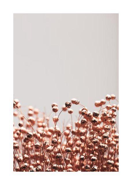 Dried Grass Copper 04