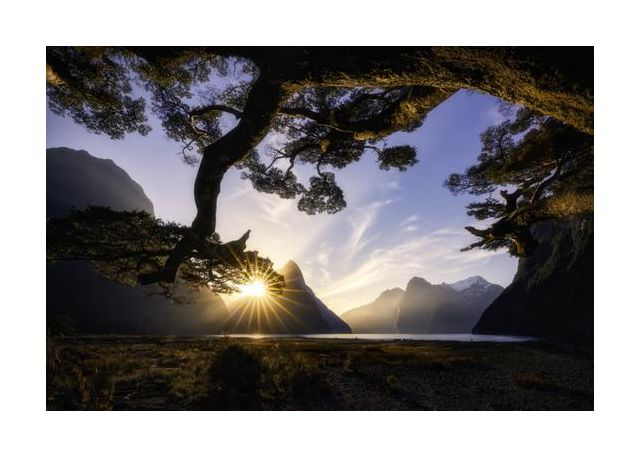 Sunny Day in Milford Sound