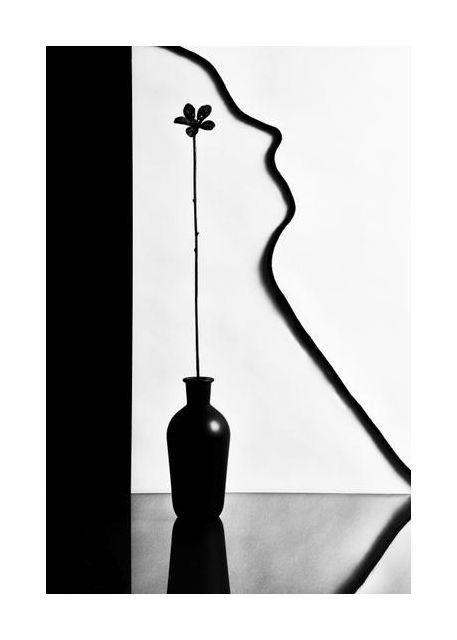 Vase Silhouette